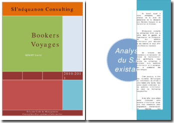 Bookers Voyages: analyse du System d information