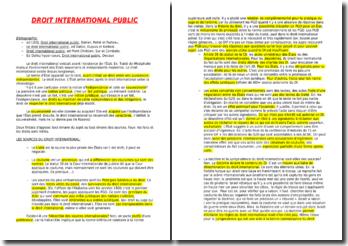 droit international public licence 3