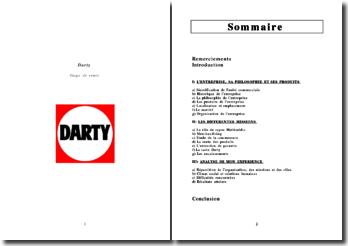rapport de stage Darty 2010