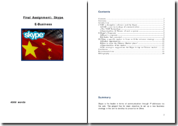 E-Business: Skype in China
