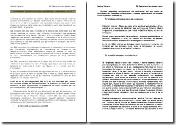 Dissertation : Exercice du droit syndical et NTIC