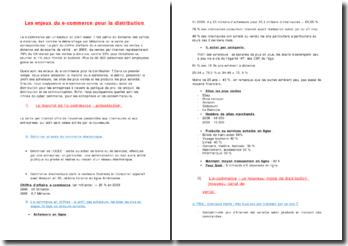 LES ENJEUX DU E COMMERCE POUR LA DISTRIBUTION