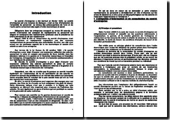 Information et consultation du CE