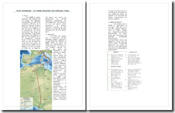 FICHE TECHNIQUE : LE TRANS-SAHARAN GAS PIPELINE (TSGP)