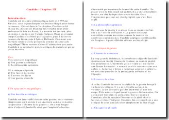 Commentaire Candide ou l'Optimisme Chapitre III