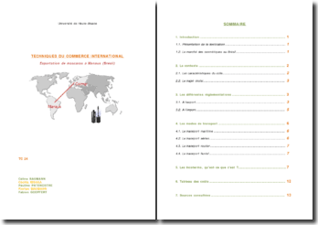 Etude de cas - Exportation de Mascara (Colmar [FR] - Manaus [BR])