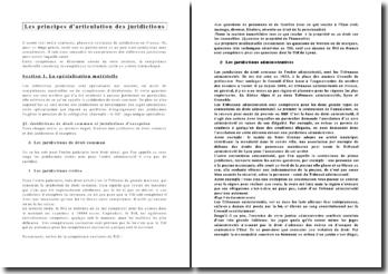 Les principes d'articulation des juridictions