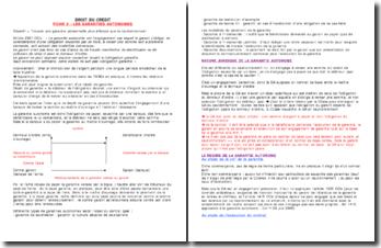 Droit du crédit/Sûretés Fiche de révision: Les garanties autonomes