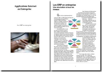 Les ERP (PGI) en Entreprise