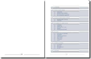 Etude de faisabilité à l'exportation pour la société L'épi doré (2006)