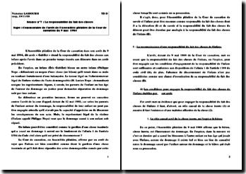 arrêt Ass. Pl. Cour de cassation 9 mai 1984