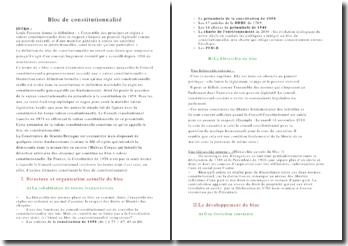 Bloc de constitutionnalité - structure et développement