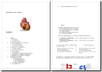 Physiologie cardiovasculaire