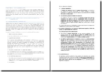 Le commerçant - statut, restrictions, comptabilité, déclarations, publicité
