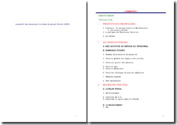 La gestion des ressources humaines du groupe Auchan (2006)