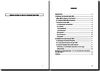 Rapport de Stage au sein de l'entreprise Sport 2000