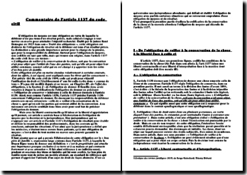 Commentaire de l'article 1137 du code civil