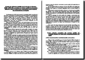 L'unité de pilotage établie par la loi du 13 février 2008 suffit-elle a rendre le service public de l'emploi efficace, tant à l'égard des entreprises qu'à l'égard des demandeurs d'emploi