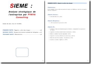 SIEME : Analyse stratégique de l'entreprise par PYNYA Consulting