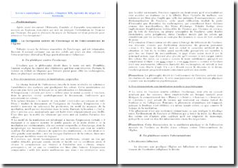 Lecture analytique du Chapitre XIX de Candide, épisode du nègre de Surinam
