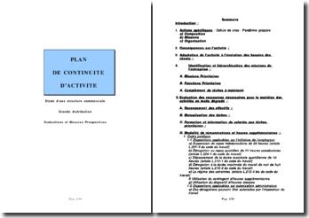 Plan de continuité d'activité: étude d'une structure commerciale, grande distribution, évaluations et mesures prospectives.