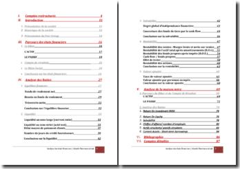 Analyse des états financiers (Wyetg pharmaceuticals)