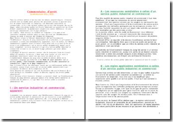 Conseil d'Etat avis 27 octobre 2000 Mme Torrent - La distinction SPA / SPIC