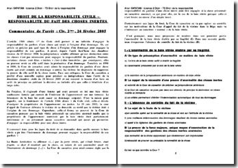 Commentaire de l'arrêt : Civ. 2ème, 24 février 2005 - engagement de la responsabilité du gardien d'une chose étant à l'origine d'un dommage - le cas d'une baie-vitrée