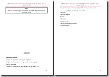Mise en oeuvre et analyse d'un système de contrôle de gestion dans une entreprise de BTP