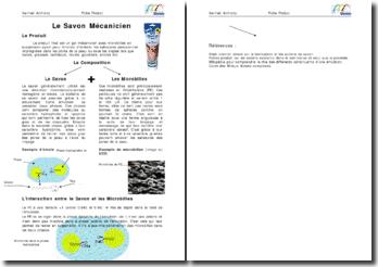 Le Savon Mécanicien - Composition et intéractions