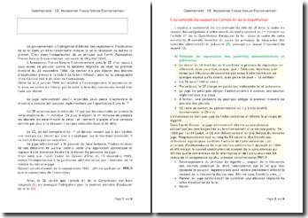 Arrêt du Conseil d'Etat du 28 juillet 2000 concernant l'Association Fance Nature Environnement