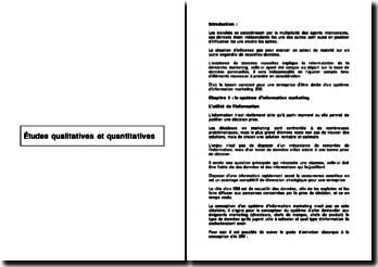 Etudes qualitatives et quantitatives: l'importance du système d'information marketing