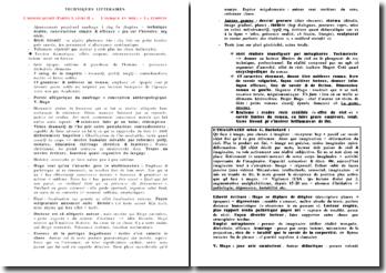 Les techniques littéraires dans L'homme qui rit, L'ourque en mer (partie I, livre II) - Victor Hugo