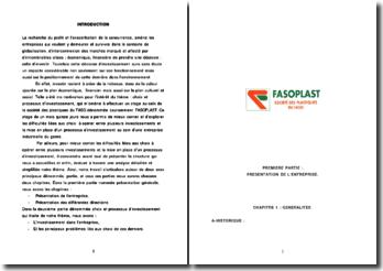 Choix et processus d'investissement au sein de la société des plastiques du FASO dénommée couramment FASOPLAST.
