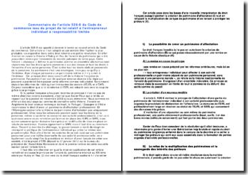 Commentaire de l'article 526-6 du Code de commerce issu du projet de loi relatif à l'entrepreneur individuel à responsabilité limitée