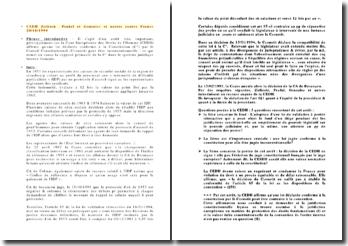 La supposée primauté de la Constitution dans le système juridique interne français