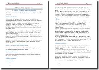 La procédure pénale - Le système français