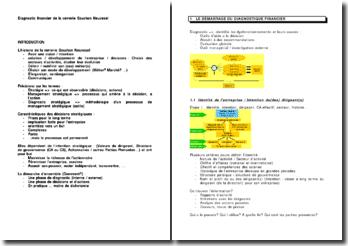Diagnostic financier de la verrerie Souchon Neuvesel
