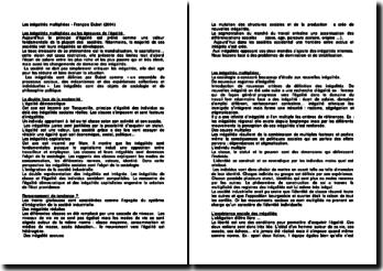Les inégalités multipliées - François Dubet (2004)
