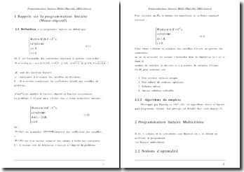 Programmation linéaire multi-objectifs (Multicritère)