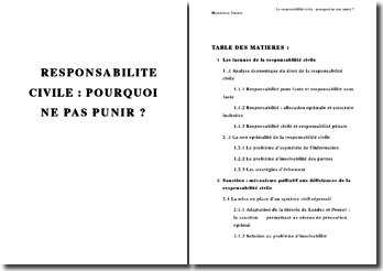 La responsabilité civile: pourquoi ne pas punir ?