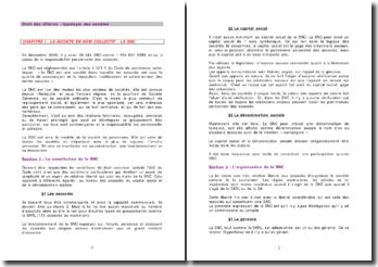 Droit des affaires : typologie des sociétés