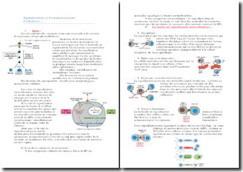 Signalisation et communications cellulaires