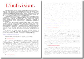 L'indivision confère à plusieurs personnes des droits identiques et concurrents sur un même bien
