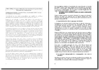 Conseil d'État, 16 novembre 2009, Société les résidences de Cavalière: L'État, l'espace littoral et la fonction de protection du droit de l'urbanisme