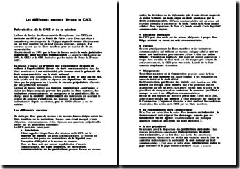 Les différents recours devant la CJCE (Cour de Justice des Communautés Européennes)