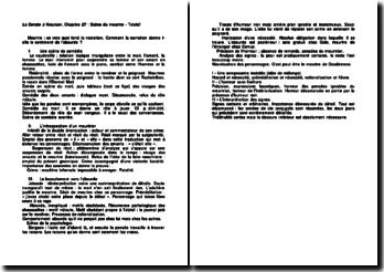 La Sonate à Kreutzer, Chapitre 27 : Scène du meurtre - Tolstoï