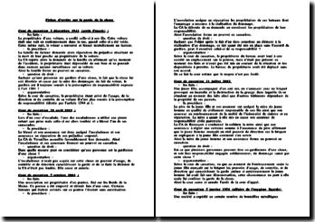 Cour de cassation, arrêts du 2 décembre 1941 (arrêt Franck), du 24 avril 2003, du 7 octobre 2004, du 11 juillet 2002, du 5 janvier 1956 (affaire de l'oxygène liquide) : la garde de la chose
