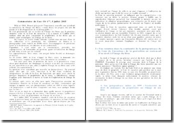 Droit civil des biens: commentaire de Cass Civ 1ère, 5 juillet 2005