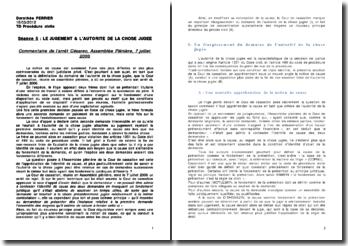 Commentaire de l'arrêt Césareo, Assemblée Plénière, 7 juillet 2006: le jugement et l'autorité de la chose jugée